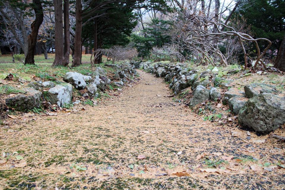 小樽公園の道