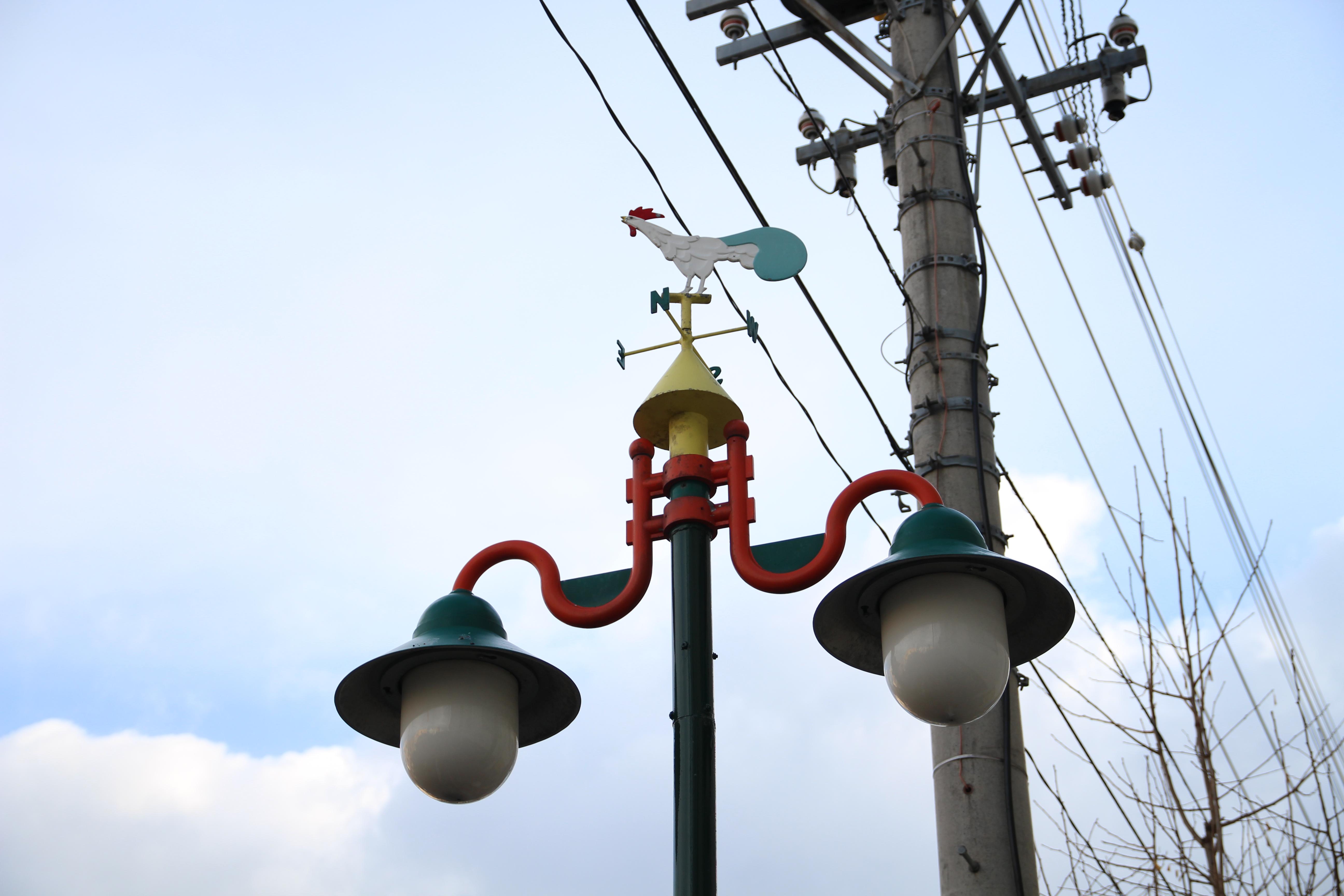 街灯の上には一羽のニワトリ | 小樽チャンネル