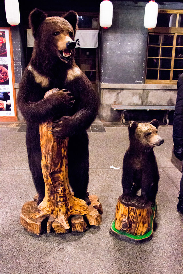 クマの剥製親子1