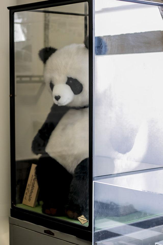 小樽駅駅長室パンダの人形