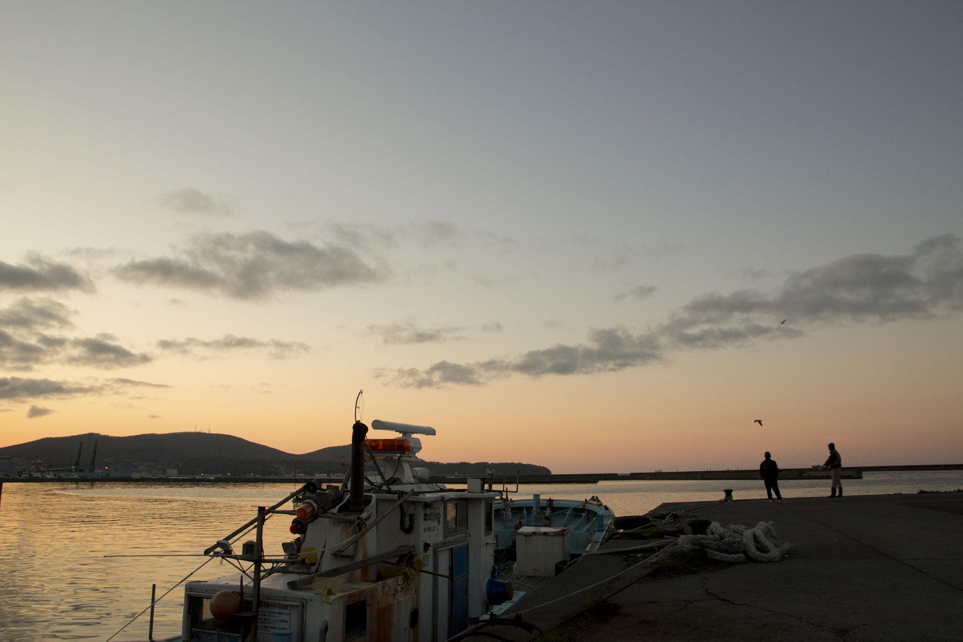 小樽港、釣り